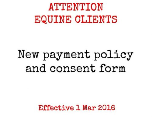 Attention All Equine Clients – New Policy Effective 1st March 2016