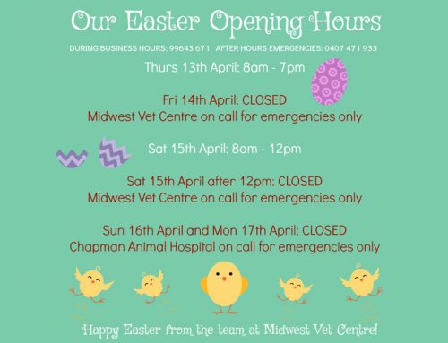 Easter 2017 Opening Hours
