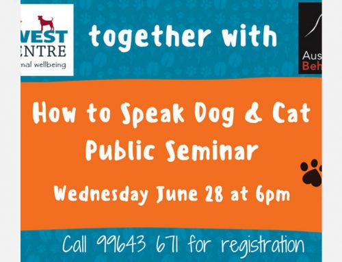 How to Speak Dog & Cat – Public Seminar presented by Australian Veterinary Behaviour Services