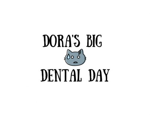 Dora's Big Dental Day