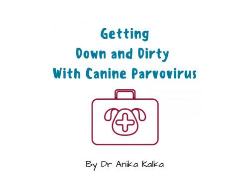 Getting Down & Dirty with Canine Parvovirus – Dr Anika Kalka